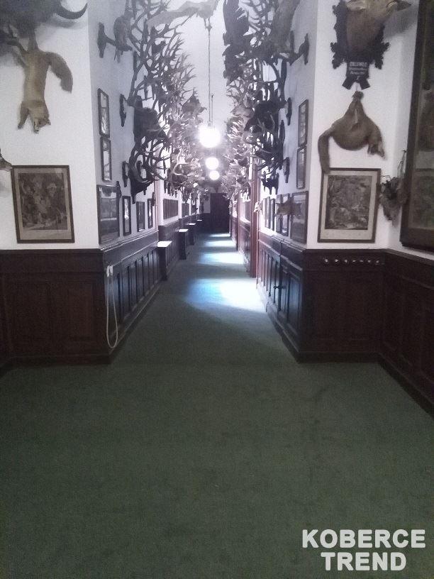 Pokládka podlah 22